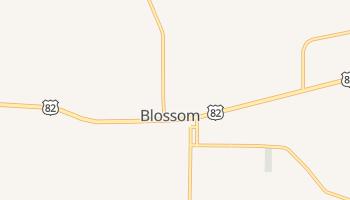 Blossom, Texas map