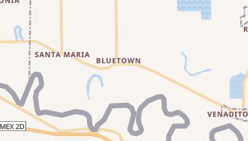 Bluetown, Texas map