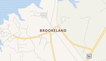 Brookeland, Texas map