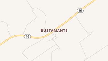 Bustamante, Texas map