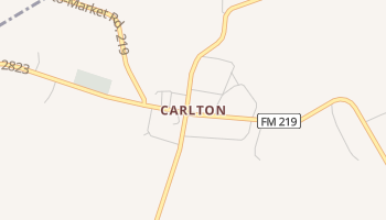 Carlton, Texas map