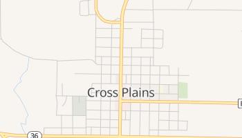 Cross Plains, Texas map