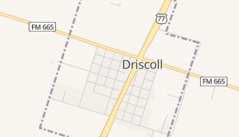 Driscoll, Texas map