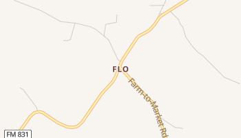 Flo, Texas map