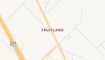 Fruitland, Texas map