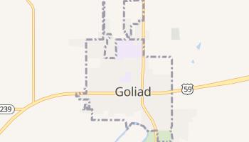 Goliad, Texas map