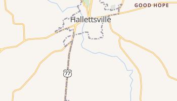 Hallettsville, Texas map