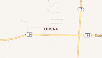 Loving, Texas map
