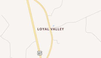 Loyal Valley, Texas map