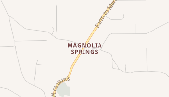 Magnolia Springs, Texas map