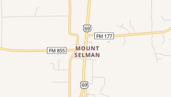 Mount Selman, Texas map