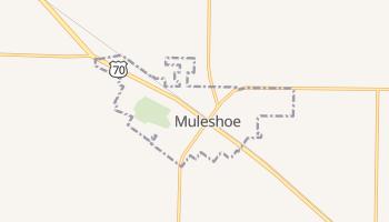 Muleshoe, Texas map