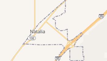 Natalia, Texas map