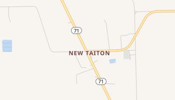 New Taiton, Texas map