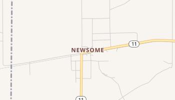 Newsome, Texas map