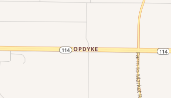 Opdyke, Texas map