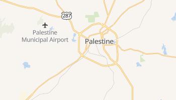 Palestine, Texas map