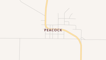 Peacock, Texas map