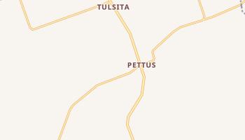 Pettus, Texas map