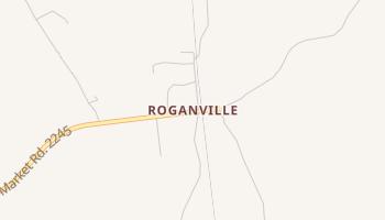 Roganville, Texas map
