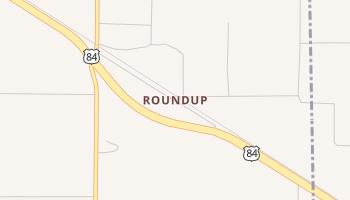Roundup, Texas map