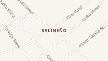 Salineno, Texas map