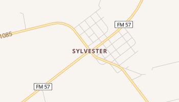 Sylvester, Texas map