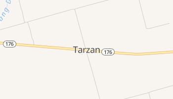 Tarzan, Texas map