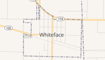 Whiteface, Texas map
