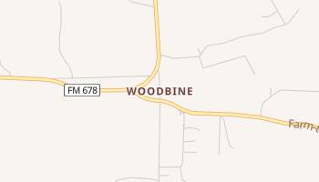 Woodbine, Texas map