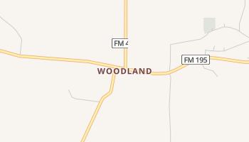 Woodland, Texas map