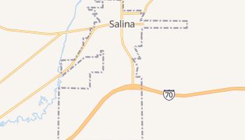 Salina, Utah map