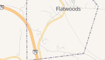 Flatwoods, West Virginia map