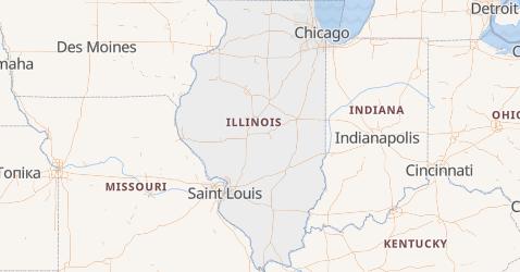 Illinois - szczegółowa mapa